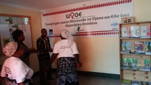 DSW Tanzania: Women and Girls Information Resource Centre Launched!