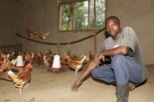 Julius Mbusa im Hühnerstall