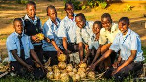 Kinder in Afrika mit ihren Fußbällen aus Bananenblättern