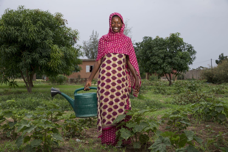 Frau mit Gießkanne in einem Gemüsegarten im Senegal