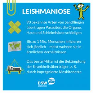 Parasit: Steckbrief Leishmaniose