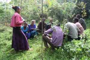 Das Bonga-Projekt der DSW schult Jugendliche in Äthiopien