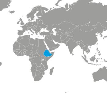 Der Kampf gegen Scheidenfisteln in Äthiopien