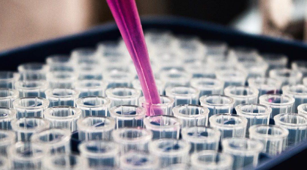 DSW-Studie zeigt: Produktentwicklungspartnerschaften helfen, vernachlässigte Krankheiten einzudämmen